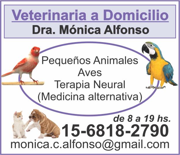 DRA. ALFONSO MONICA