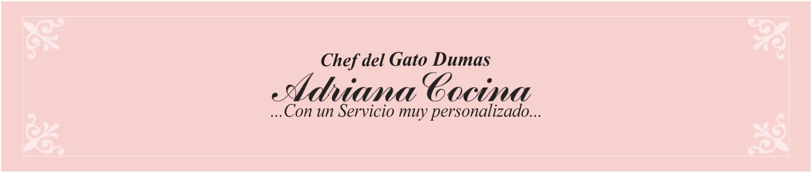 ADRIANA COCINA CATERING